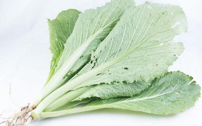 Rau cải bẹ là một trong những loại thực phẩm tốt cho sức khỏe con người