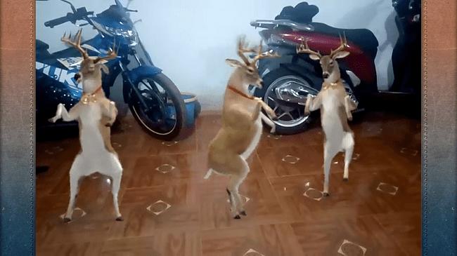 Hình ảnh iphT1v2 1 của Cách tạo video tuần lộc nhảy mừng Noel cực vui bằng điện thoại tại HieuMobile
