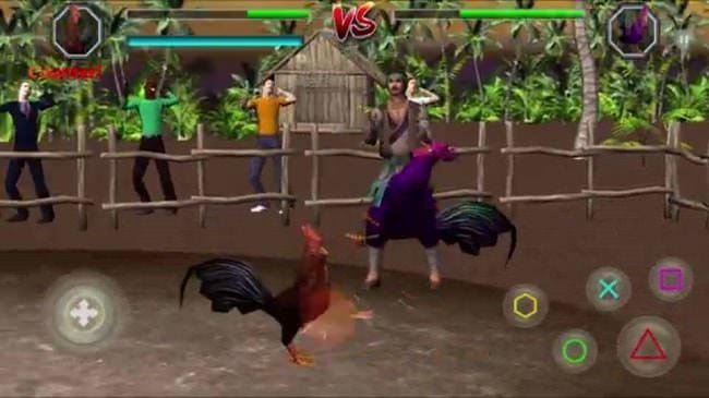 Hình ảnh li7PLvT của Tải game Angry Rooster Fighting Hero - Đá Gà 3D thú vị tại HieuMobile
