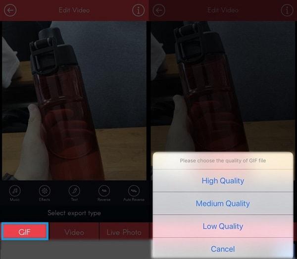 Hình ảnh optimized 383k của Hướng dẫn tạo và chuyển đổi ảnh Live Photo thành ảnh gif cho iPhone tại HieuMobile