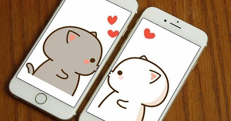 Hình nền 2 mèo hôn nhau cho điện thoại