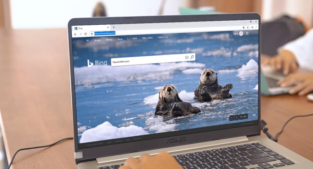 Công cụ tìm kiếm Bing của Microsoft có những hình nền độc đáo rất thích hợp để mang lên màn hình máy tính